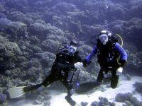 marsa-alam-2008-onderwater-1023